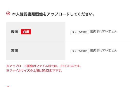 スクリーンイメージ