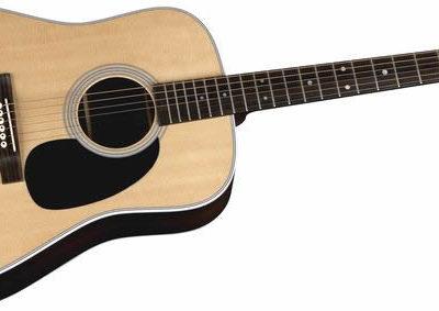 Martin D-45ギター